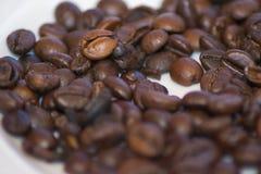 在白色的豆早餐咖啡理想的查出的宏指令 库存图片