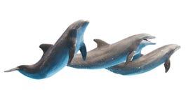 在白色的跳跃的海豚 库存照片