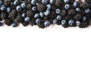 在白色的黑和蓝色莓果 顶视图 成熟黑莓和蓝莓在白色背景 在图象机智边界的莓果  免版税图库摄影