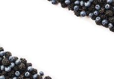 在白色的黑和蓝色莓果 顶视图 成熟黑莓和蓝莓在白色背景 在图象机智边界的莓果  免版税库存照片