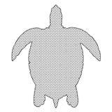 在白色的织地不很细海龟 免版税图库摄影