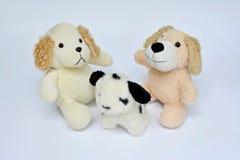 在白色的3条狗玩偶 免版税库存图片