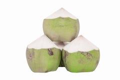 在白色的绿色椰子 免版税库存图片