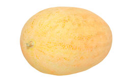 在白色的黄色瓜 免版税库存图片