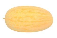 在白色的黄色瓜 库存照片