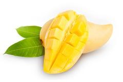 在白色的黄色芒果 库存图片