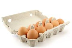 在白色的eggbow 免版税库存图片