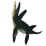 在白色的Liopleurodon 免版税库存照片