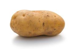 在白色的Potatoe 图库摄影