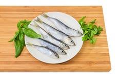 在白色盘和绿色的被除霜的波儿地克的鲱鱼 库存图片