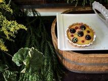 在白色盘的莓微型杉木 库存照片