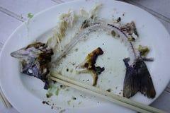 在白色盘的鱼骨 免版税库存照片