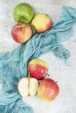 在白色石背景的秋天醇厚的苹果 免版税库存照片