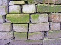 在白色砖,老物质背景的绿色青苔 免版税图库摄影