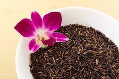 在白色碗的泰国糙米莓果有兰花的 库存图片