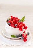 在白色碗的莓果 库存照片
