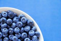 在白色碗的蓝莓在五颜六色的蓝色backround 库存照片