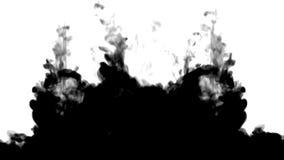 在白色移动的很多贷方流程慢动作、墨水或者烟注射 黑色在墨似或发烟性的水中 皇族释放例证