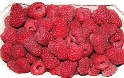 在白色箱子的莓 免版税库存图片