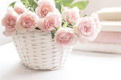 在白色篮子关闭的美丽,桃红色玫瑰 免版税库存图片