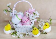 在白色篮子的桃红色复活节彩蛋与樱桃花和复活节鸡 图库摄影