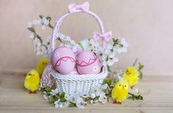 在白色篮子的桃红色复活节彩蛋与樱桃花和复活节鸡 免版税库存照片
