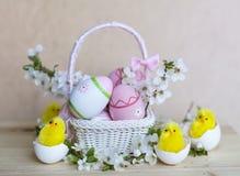 在白色篮子的桃红色复活节彩蛋与樱桃花和复活节鸡 库存图片