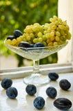 在白色老表面关闭的新鲜的李子 绿色葡萄和李子在玻璃水果摊在绿色自然弄脏了背景 免版税库存照片