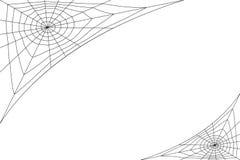 在白色背景上的同心白色网 免版税库存照片