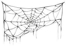 在白色背景上的被撕毁的蜘蛛网 皇族释放例证
