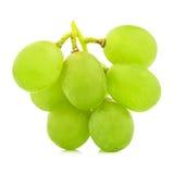 在白色背景保险开关隔绝的绿色葡萄束 免版税库存图片