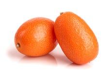 在白色背景关闭或金桔隔绝的Cumquat  免版税库存图片