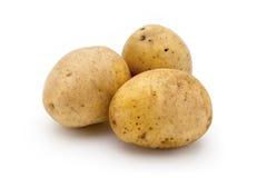 在白色背景关闭隔绝的土豆  免版税图库摄影