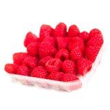 在白色背景关闭隔绝的成熟莓,宏指令 免版税库存图片