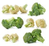 在白色背景和新鲜的花椰菜隔绝的硬花甘蓝 免版税库存图片