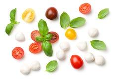 在白色背景和无盐干酪隔绝的蕃茄、蓬蒿 免版税库存照片
