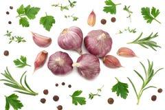 在白色背景和荷兰芹隔绝的大蒜 健康的食物 顶视图 图库摄影