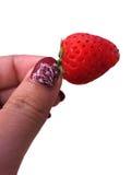 在白色背景在手边隔绝的草莓 库存照片