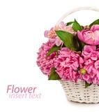 在白色背景在花瓶老隔绝的花花束  免版税库存照片