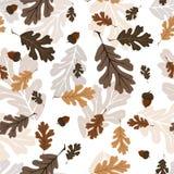 在白色背景留给森林样式无缝 图库摄影