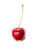 在白色背景的一棵樱桃 免版税库存照片