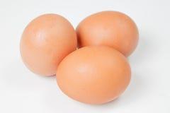 在白色背景的三个鸡鸡蛋 免版税库存照片
