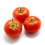 在白色背景的三棵蕃茄菜 免版税库存图片
