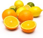 在白色背景的不同的柑橘水果 库存图片