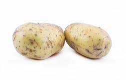 在白色背景的两个土豆 免版税库存图片