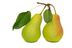 在白色背景的两个大梨 免版税库存图片