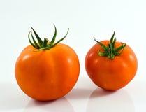 在白色背景的两个蕃茄 图库摄影