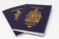 在白色背景的两本加拿大护照 免版税库存照片