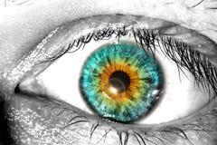 在白色背景的五颜六色的肉眼宏观特写镜头纹理 库存照片