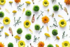 在白色背景的五颜六色的花Arrangment 免版税库存图片